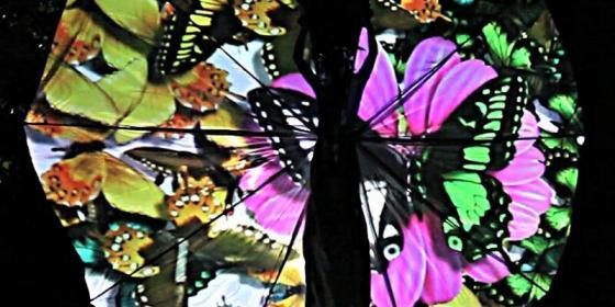 Farfalle Proiezioni - Corona Events -