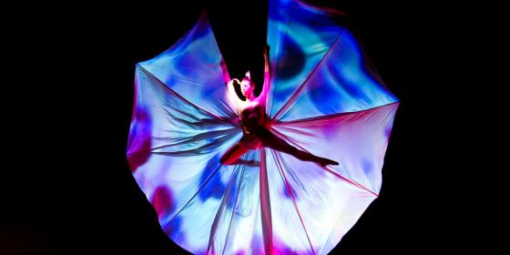 Farfalle Volanti - Corona Events -